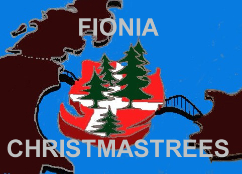 Fionia Christmas Trees